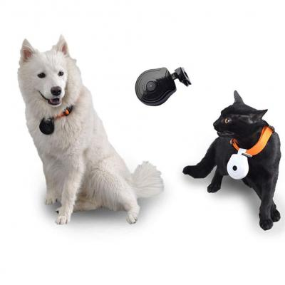XDLUK Digital Pet Collar CAM Cámara DVR Video Recorder Monitor para Dog Cat Puppy Black                                                                                                       Clase de eficiencia energética A