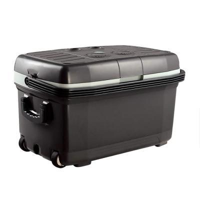 45L coche mini refrigerador pequeño doble voltaje 12V DC 220V AC portable Cool Box para viajes